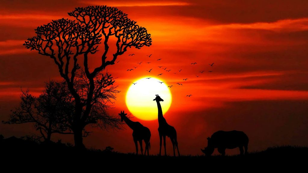 africa-free-img